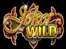 Онлайн слот Дикий Джокер
